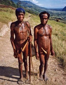 Аборигены и секс новой гвинеи видео